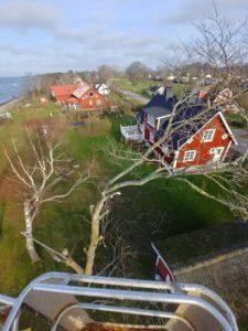 Trädfällning Kalmar - Trädfällning i Kalmar